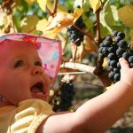 baby and grapes